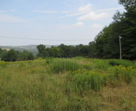 Views For Miles - 20+ Acres