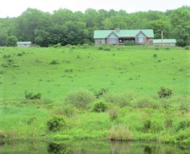 H35 - 2 Homes, Barn, Stream, Ponds, and 170 +/- Acres!