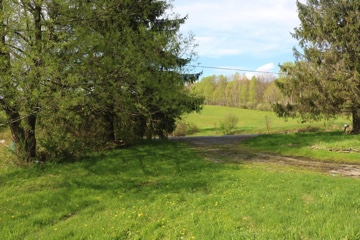 H47 - Foreclosure strictly as is. Make a reasonable offer. There are 2 parcels with total of 45.5 acres.