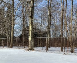 H46 - 105 ACRES - Partially cleared and sloped - great hunting land!